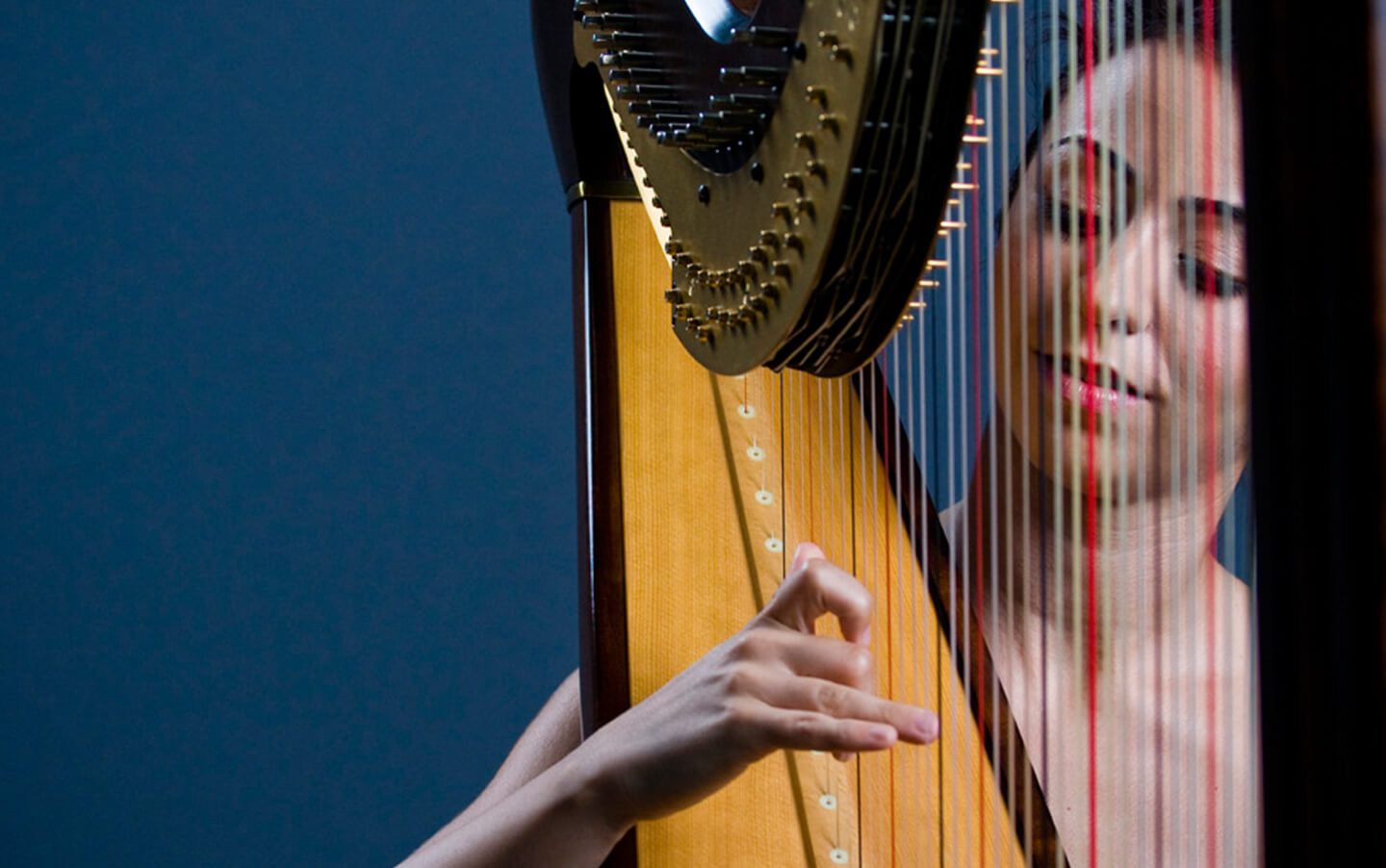 harpist-wedding